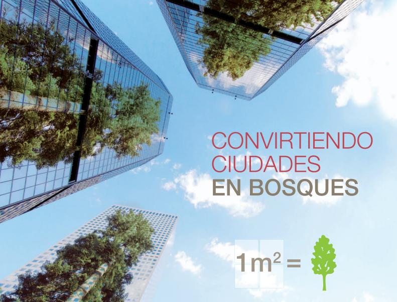 Convirtiendo-ciudades-en-bosques