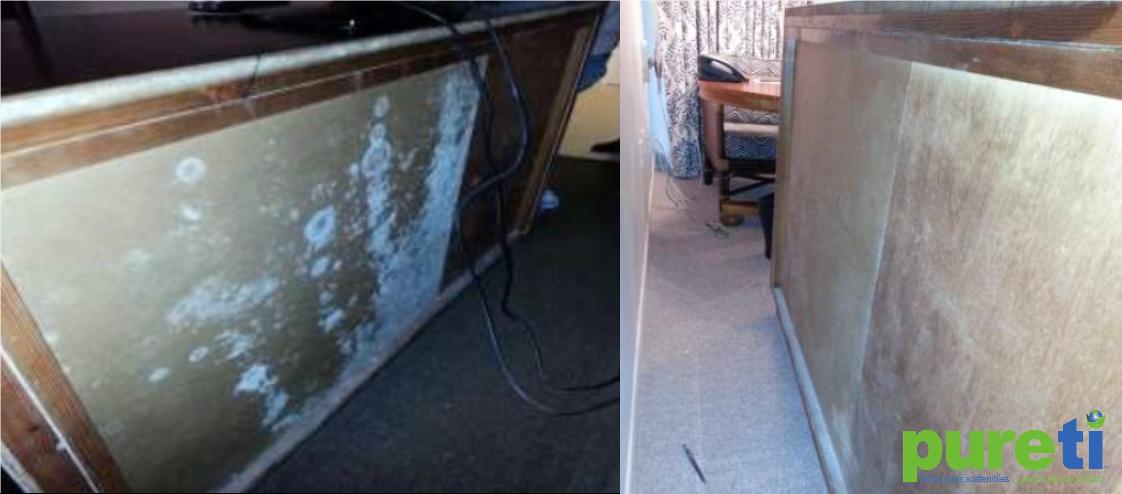 pureti-recupera-habitaciones-de-hotel-purificando-el-ambiente-eliminando-el-moho-en-muebles